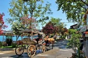 کالسکه سواری در جزیره بیوک آدا-تفریحات در استانبول