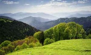 تفریحات گرجستان تابستانی