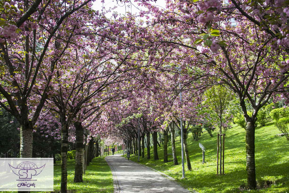سفر به آنکارا در بهار